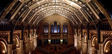 hintze-hall-at-night