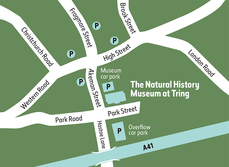 A map showing Museum and High Street parking