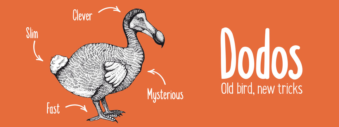 The Dodos exhibition at Tring