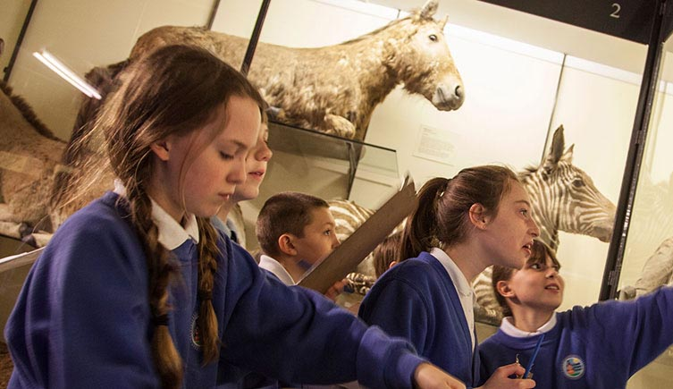 Students observe animals in the galleries