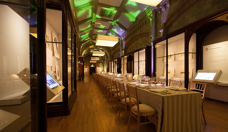 The Images of Nature gallery at the Natural History Museum, ready for an event