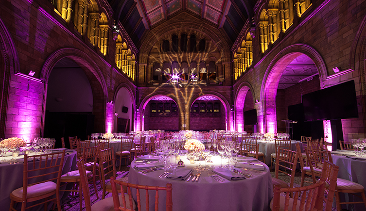 North Hall at the Natural History Museum dressed for an event