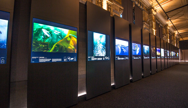 wpy-exhibition-two-column