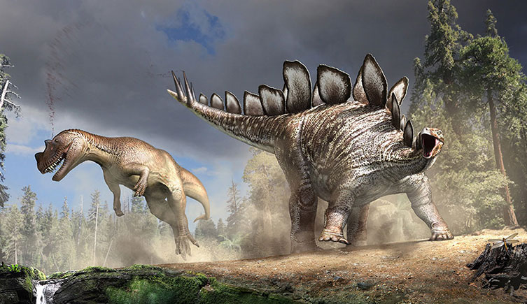 Stegosaurus and Stegosaurus battle