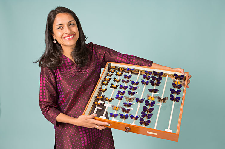 Dr Blanca Huertas holding a drawer of butterflies