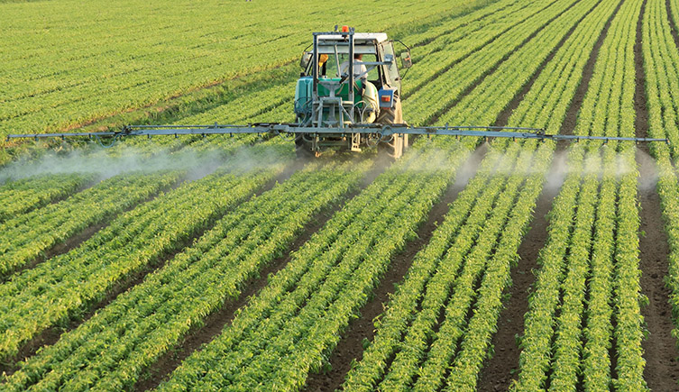 The sparying of pesticides on fields has been increasing over the years