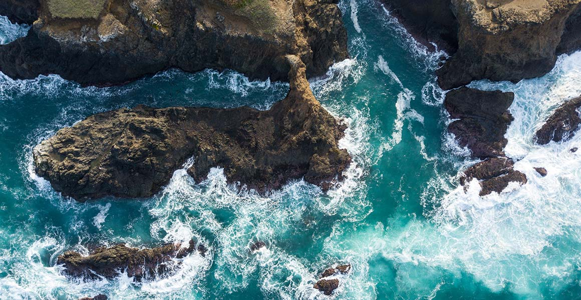 Ocean ecosystems are more sensitive to climate change