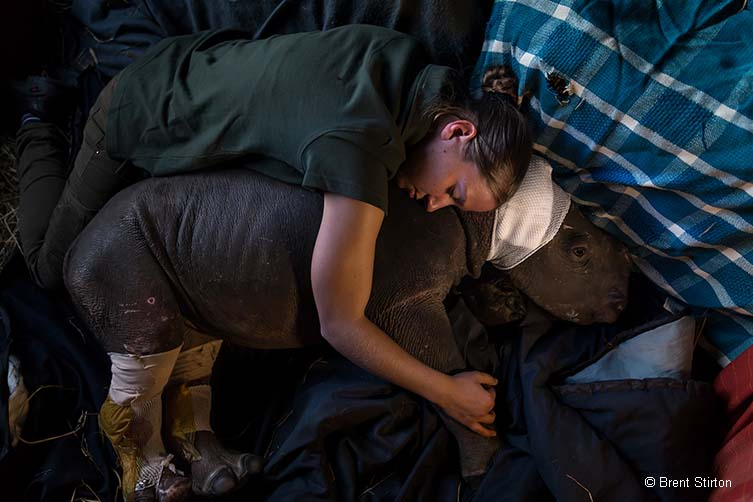 Caring for Lulah © Brent Stirton