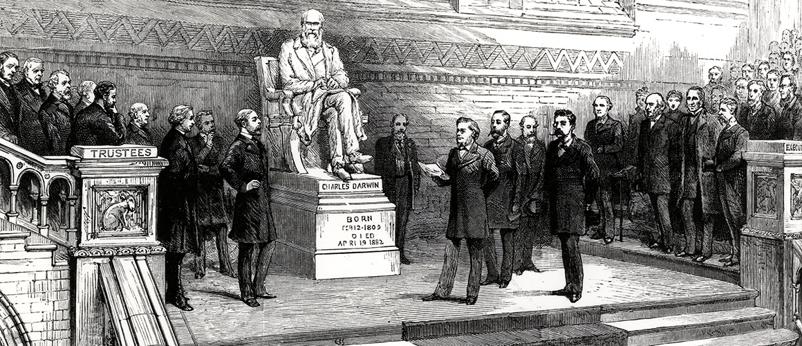 A black and white sketch of the unveiling of a statue of Charles Darwin at the Museum, 1885