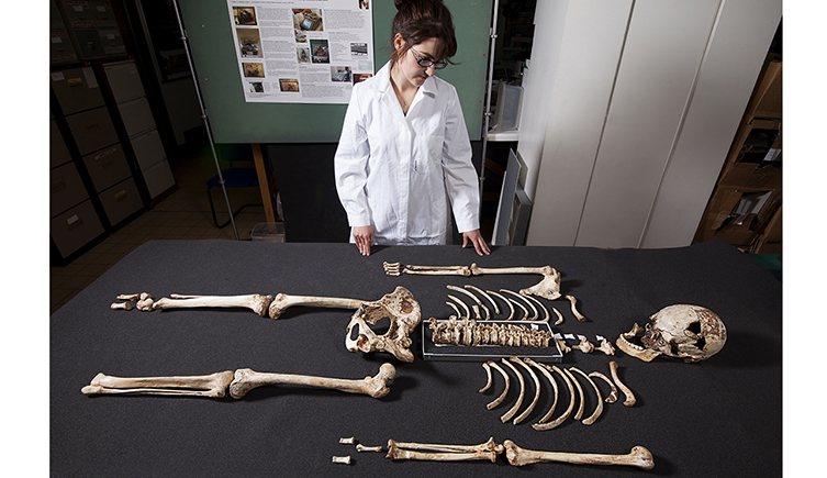 Conservator Effie Verveniotou examining the oldest nearly complete modern human skeleton ever found in Britain.