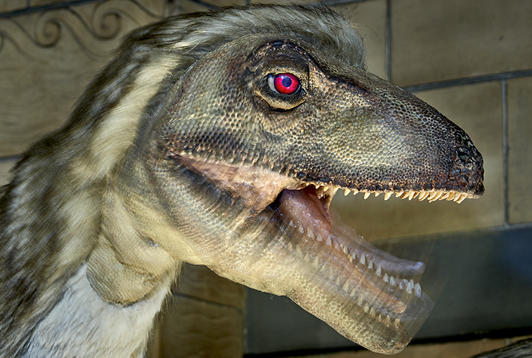 Deinonychus animatronics in the Dinosaurs gallery