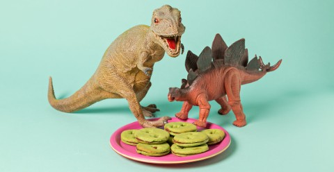Plate of dinosaur footprint cookies in front of T. rex and Stegosaurus models