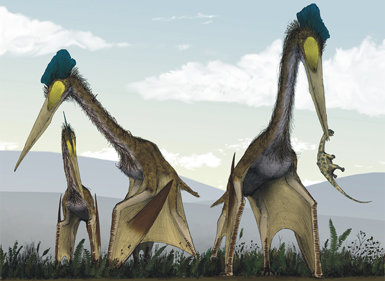Palaeoart reconstruction of giant pterosaurs