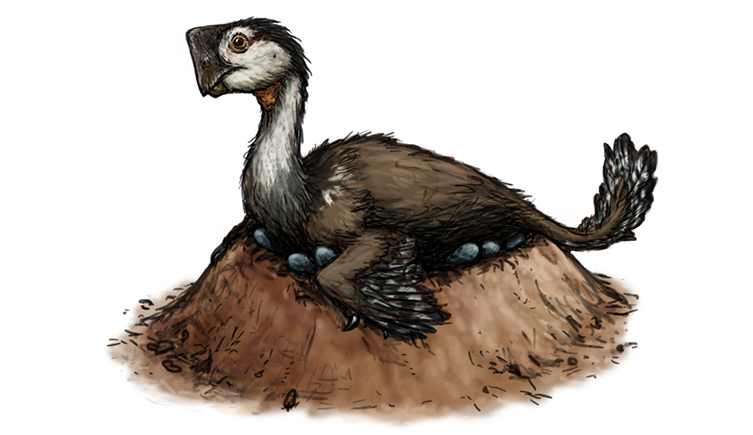 Illustration of a dinosaur sitting on its nest