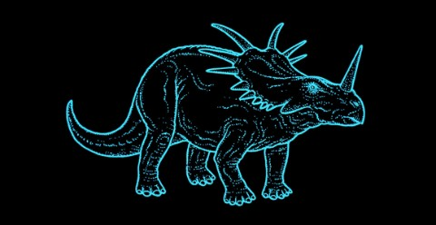Simple illustration of Styracosaurus