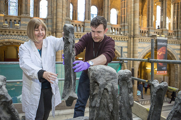 Lorraine Cornish and Rob McLeod inspect Dippy