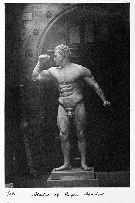 The statue of Sandow on display in the Museum