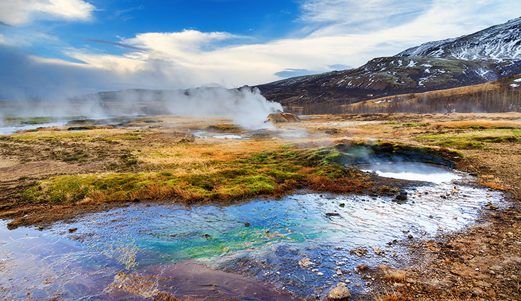 Plants moved onto land in geothermal wetlands