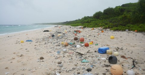 The beach on Henderson Island covered in rubbish