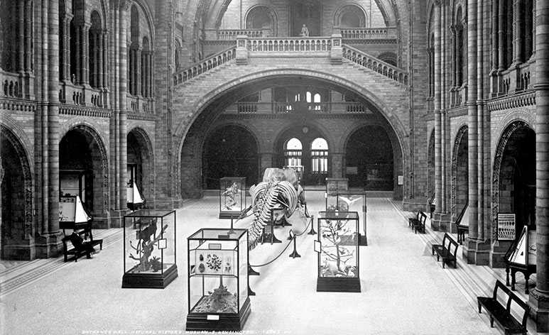 Black and white photograph of Hintze Hall, taken in 1895