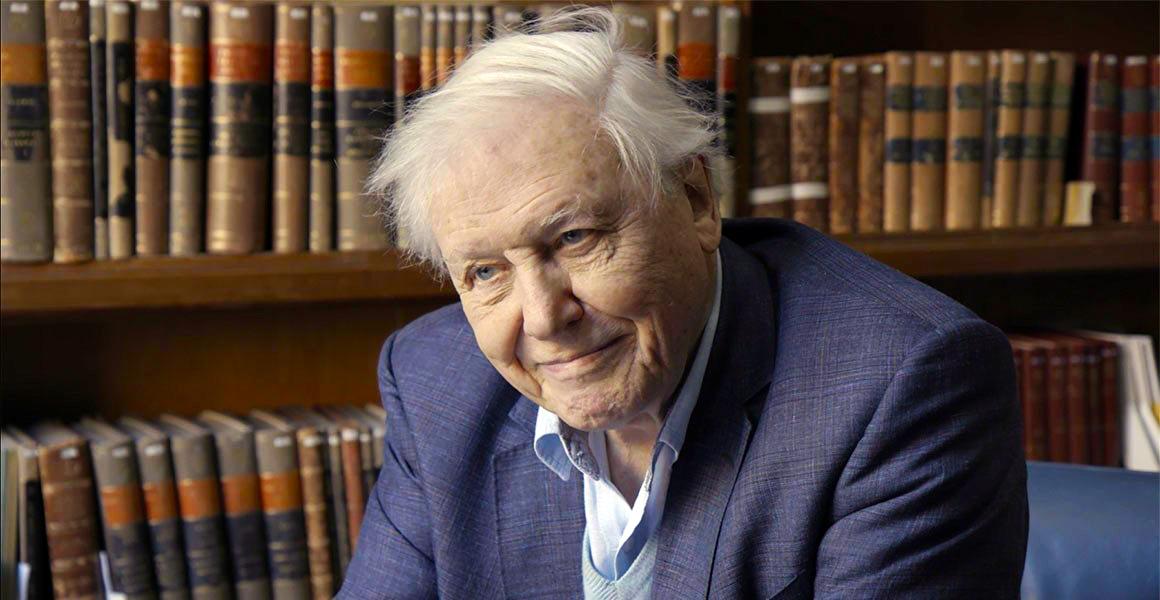 Sir David Attenborough on bringing wildlife into your ...