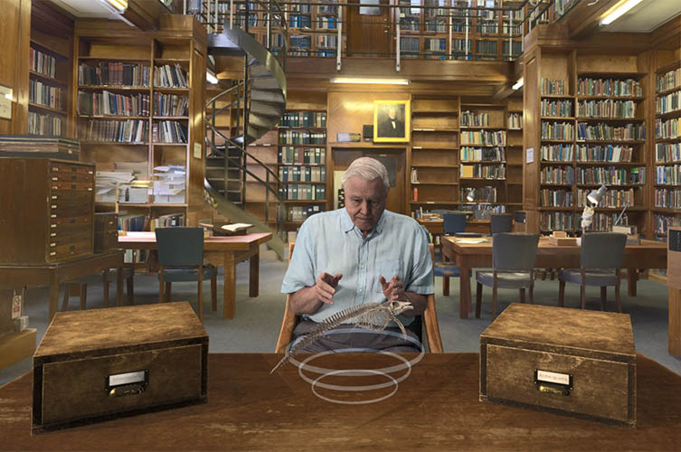 The virtual Sir David discusses the Museum's blue whale skeleton in the Earth Sciences Library