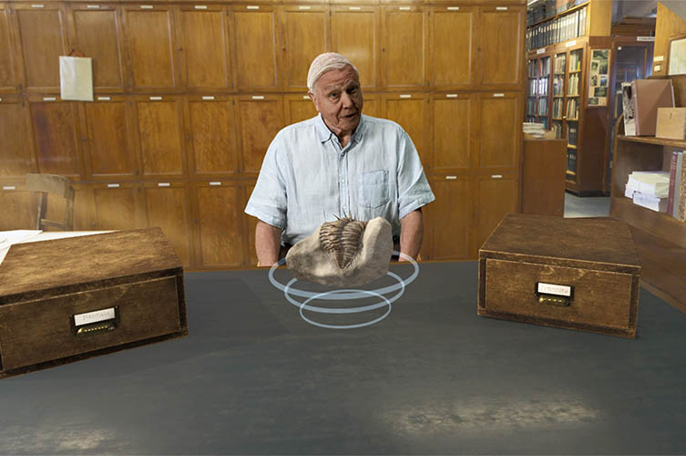 Explores the Museum's collection with Sir David Attenborough
