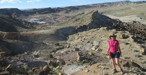Palaeontologist Dr Susie Maidment on fieldwork in Utah