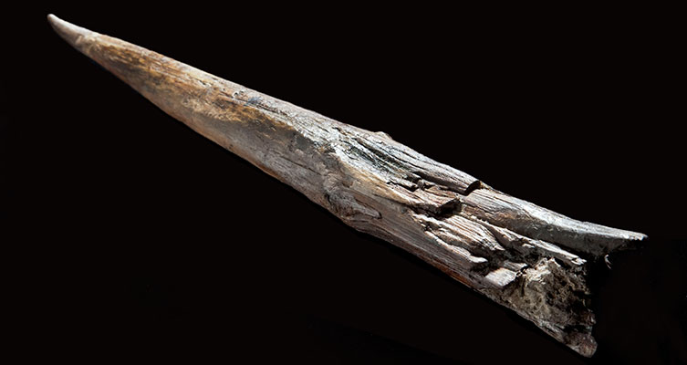 400,000-year-old wooden spear from Clacton, Essex