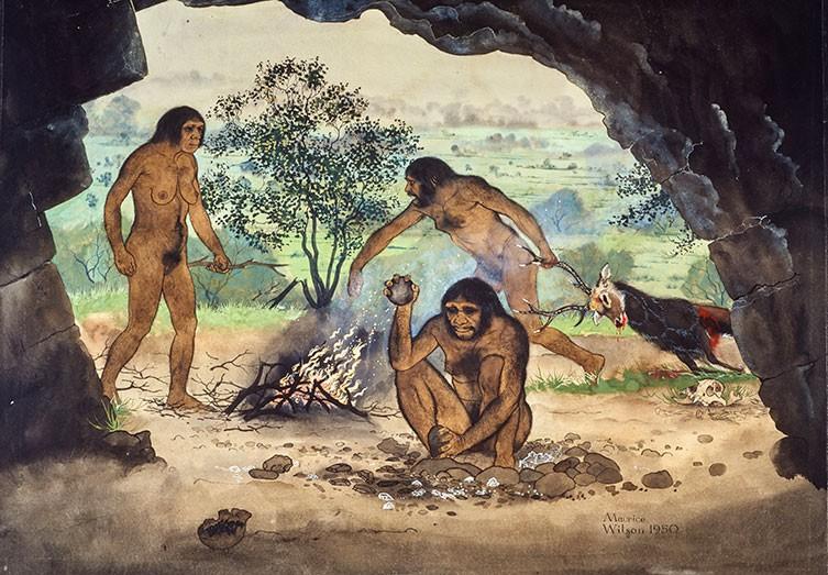 Illustration of Homo erectus at work