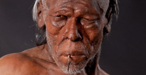 Early Homo sapiens model based on humans living around 30,000 years ago