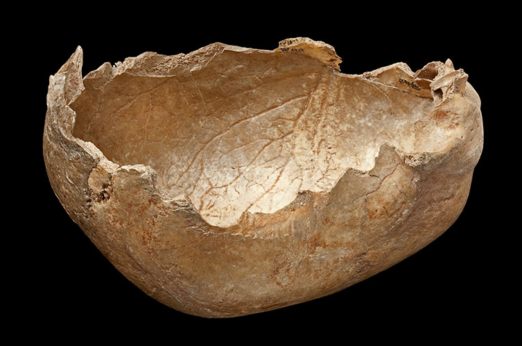 Human skull-cup from Gough's Cave