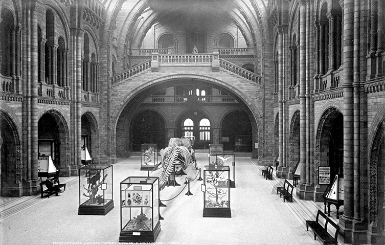 The Central Hall in 1902