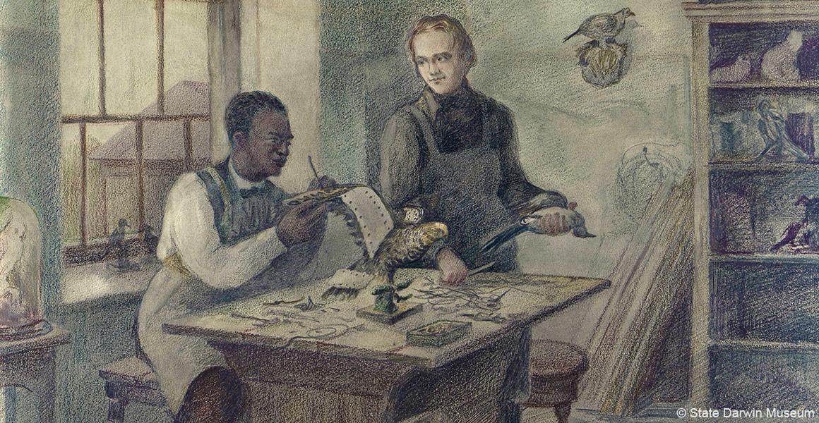 John Edmonstone: the man who taught Darwin taxidermy