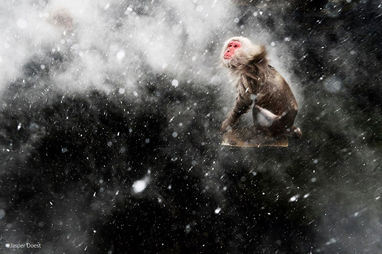 Snow moment by Jasper Doest.