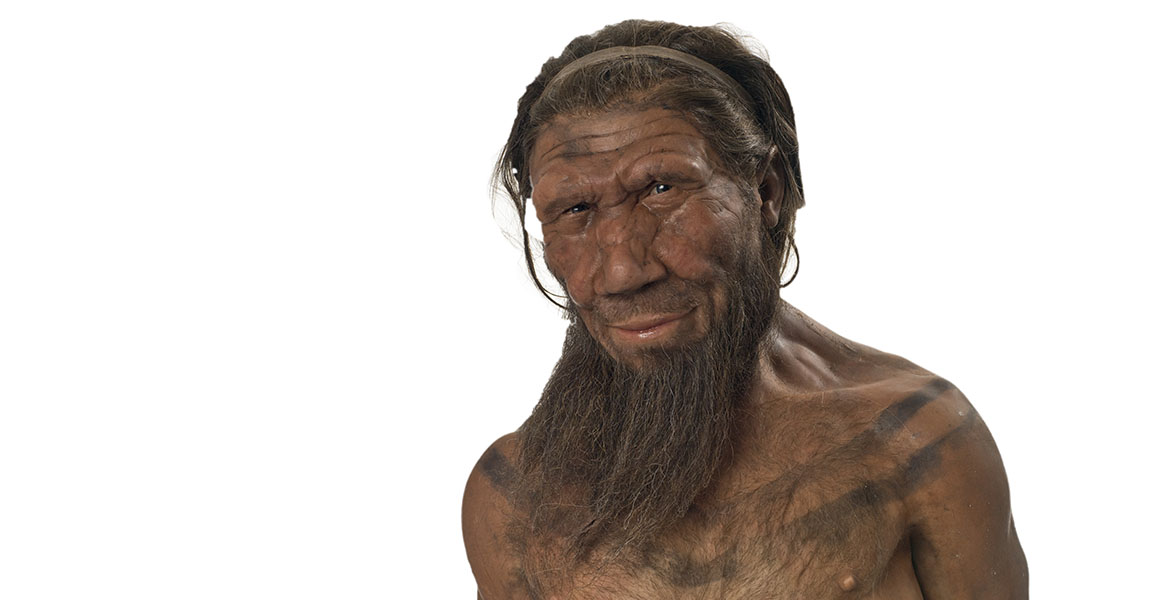 Bust of a Neanderthal