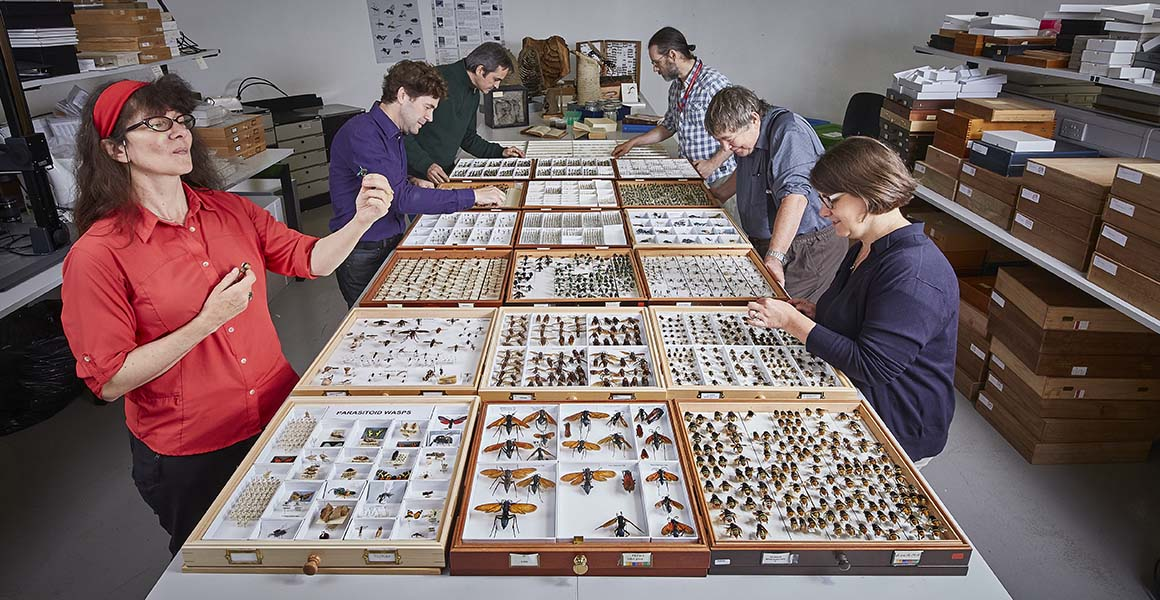 new-species-collection-full-width