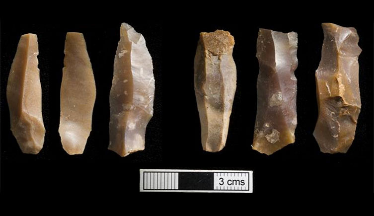 Microlithic tools from the Grotte des Pigeons