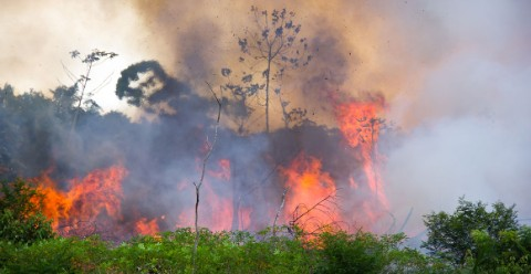 A fire rages through an area of the Amazon