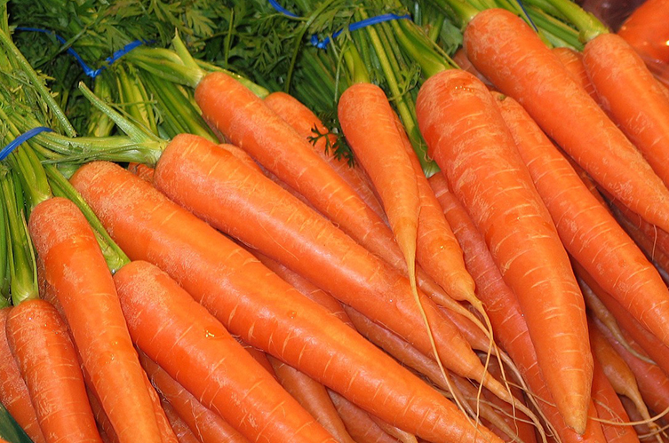 Close-up of orange carrots on sale at a market