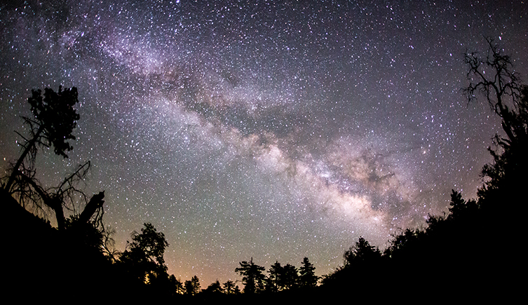 An image of the night sky above some trees.