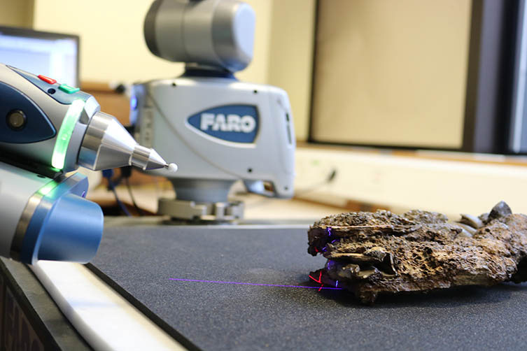 A Toxodon bone being laser scanned