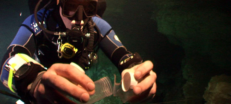 Dr Bjoern von Reumont collecting a sample on a cave dive