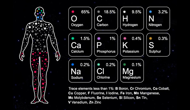 Diagram of elements that make up the human body. Including Oxygen, Carbon, Hydrogen, Nitrogen and Calcium.