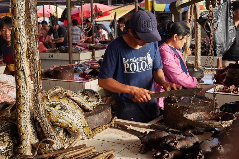 A man cuts up a fruit bat in a wild animal market