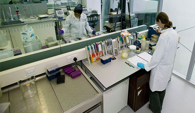 Working in the molecular labs