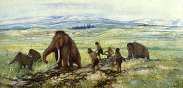 Extinction of large mammals in the Late Quaternary ice age
