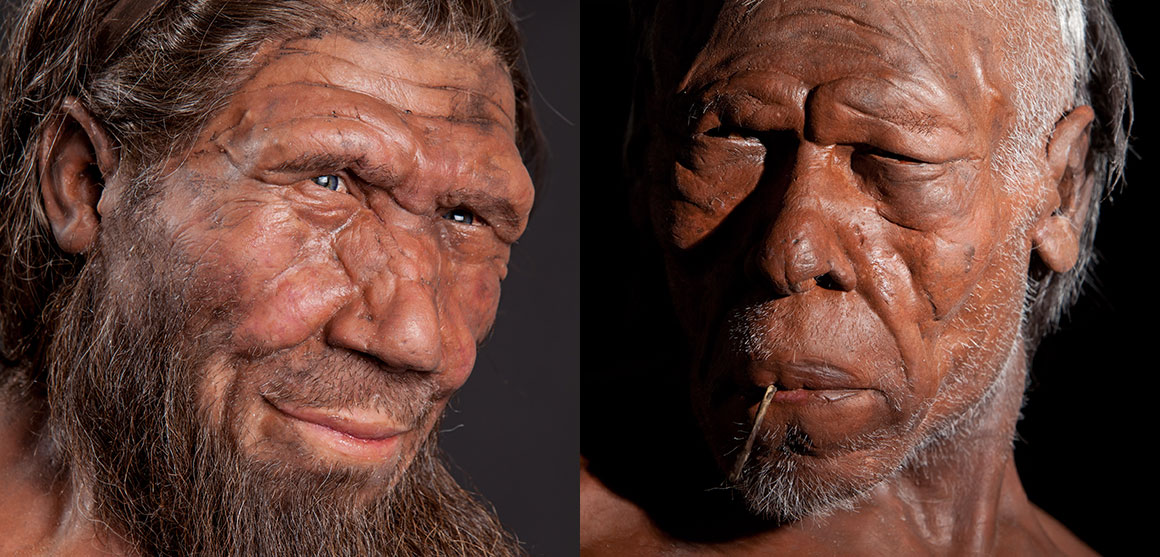 early man a modern man The great human migration why humans left their african homeland 80,000 years comparing it with skulls from neanderthals, early modern europeans and.