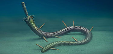 Infested fossil worms show ancient example of symbiosis