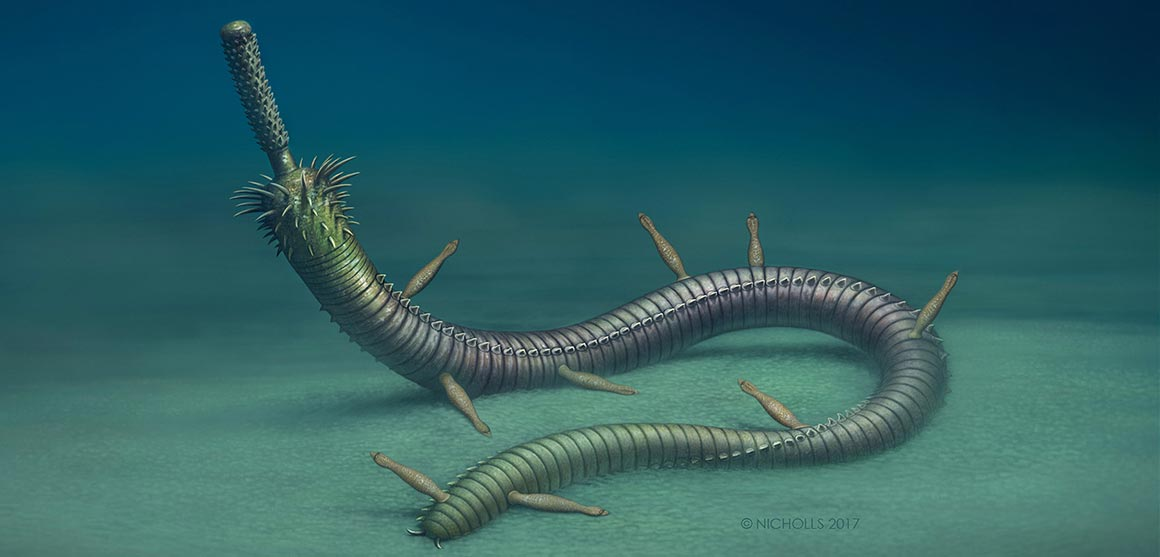 inquicus-fellatus-artist-reconstruction-news-full-column